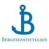 bergersens_logo_new_blue