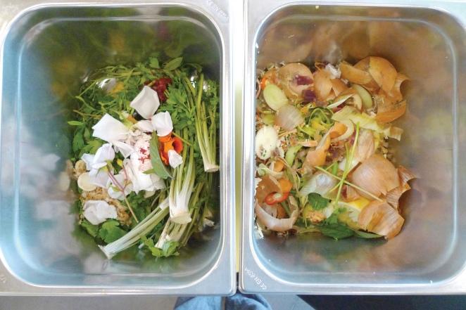 Vegetarian Course